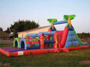 bouncy castles 2